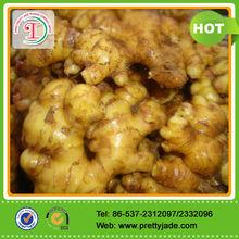 Price of fresh ginger