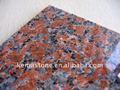 varios y china granito exóticas modelos