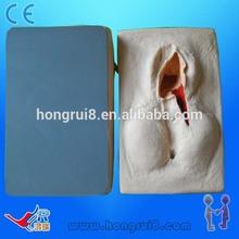 HOT SALES Practice model for vulva suture,training model,Vulva Suturing Training