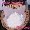 New Crop 100-120Mesh Dehydrated Garlic Powder