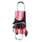 YY-26D10 Cooler box hand carts shopping trolley cooler bag