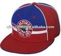 2014 sıcak satış çırpıda geri düz kenarlı kap/şapka
