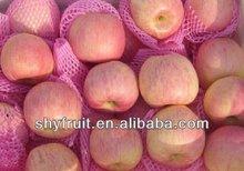 2014 haute qualité , fraîches gala apple pour vente