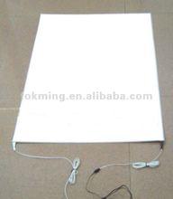 OEM Design for Hign Quality EL Panel (Customized)