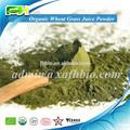 100% naturelles poudre de jus d'herbe de blé biologique
