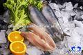 peixe congelado filé de arenque