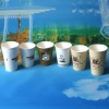 coffee cup paper with lids
