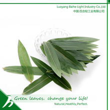 Hot Popular Natural Bamboo Leaf Sushi Decoration and Packing