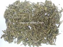 China famous organic natural slim green tea