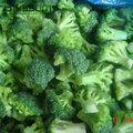 verdure surgelate iqf massa freschi di broccoli surgelati