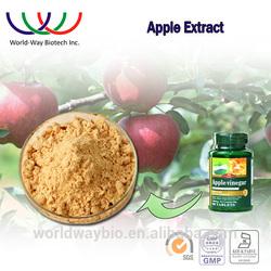 China Botanical extract 90% phlorizin,factory wholesale apple phlorizin, 100% pure apple extract phlorizin