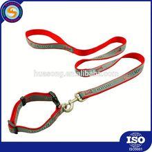 fashionable pet collar dog leash