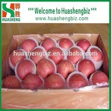 Top Quality Chinese Fresh Apple / Fresh Apple Bulk / Red Fuji Apple Price