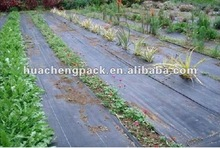 agricultural black plastic weed control