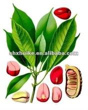 100% Natural Kola Nut Extract