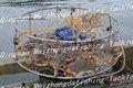 Jaula trampa de acero inoxidable para la pesca de cangrejo