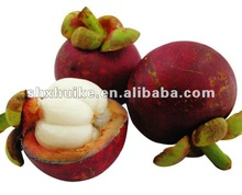 High quality Mangosteen Fruit Extract powder