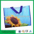 Pp no tejidos bolsa de regalo para ir de compras/biodegradables bolsas de regalo