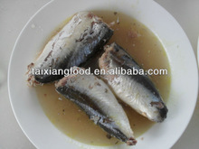 CANNED MACKEREL IN BRINE