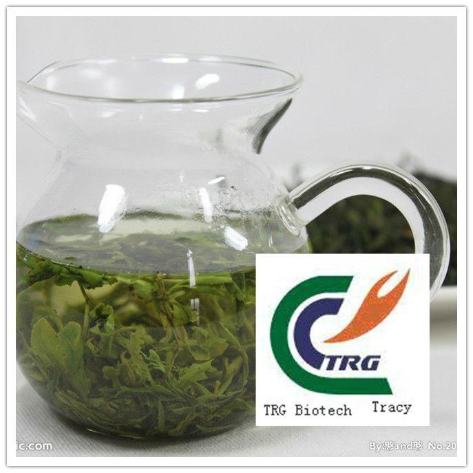 green tea extract EGCG40% polyphenol95%-98%