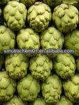 High Quality Artichoke Leaf Extract/Cynarin