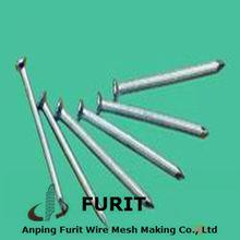 Polished zinc coated nails/coated nails/polished coated concerete nails