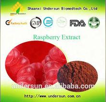 Men Health Fructus Rubi P.E. powder CAS:5471-51-2