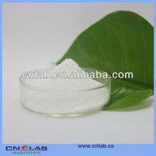 GMP Factory Supply Organic Stevia Leaf Powder