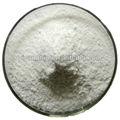 Fabricar de alta calidad de hioscina 99% bromhidrato