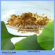 UHT Steam Treated Herbal Powder Gingko Extract