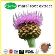Organic Maral Root Extract, Rhaponticum carthamoides Extract Powder, Maral Root Powder