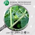 De haute qualité extrait de tribulus terrestris poudre/gros/sex drugs