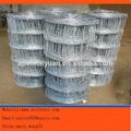 durable de alta calidad galvanizado en caliente o galvanizado eléctrica ganado esgrima para las ventas