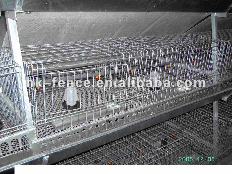 Pas cher pigeon cage poulet cages volaille cages cages pour animaux id du - Cage gabion pas cher ...