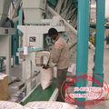 Hdf 50 tpd de harina de trigo molino/trigo molino de rodillos/de harina de trigo de la máquina