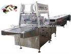 TYJ600 Chocolate candy coating Machine
