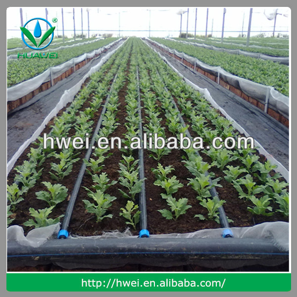 Design Greenhouse Drip Irrigation System View indoor