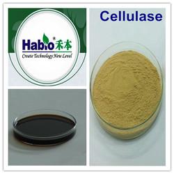 Textile Cellulase, Pulp Industrial Chemical