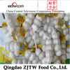 chinese jinxiang wholesale garlic