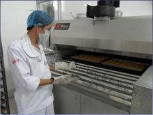 Bakestar Pita Bread Tunnel Oven Electric/Conveyor Oven