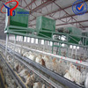 2013Hot-sale breeding cage (21years factory)