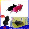 2013 hot sale crazy Micro Robot electronic mouse toys,micro robot animals