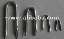 Galvanised Staples
