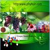 lowest price Grape Seed P.E.