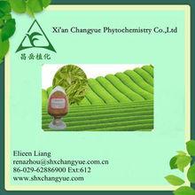 Pure Natural Green Tea Extract /Tea Polyphenol