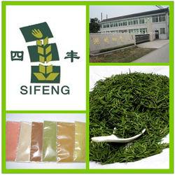 Green tea extract -100% natural green tea extract powder