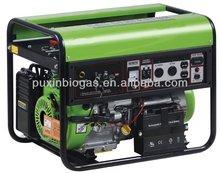 Small biogas/LPG generator