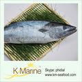 Fruits de mer exportateurs frozen sea fish