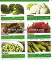 Verdure surgelate(fagioli,- piselli- carote- broccli- okra- molokhia- spanich- patatine fritte)