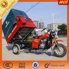 250cc 3 wheel trike/petrol motorcycle